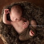 Photograph of beautiful newborn boy in a nest, Sammy by Melbourne newborn photographer, Lorna Kirkby Photography