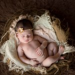Beautiful newborn in a nest. Newborn photography mentoring from the Matilda Portfolio.