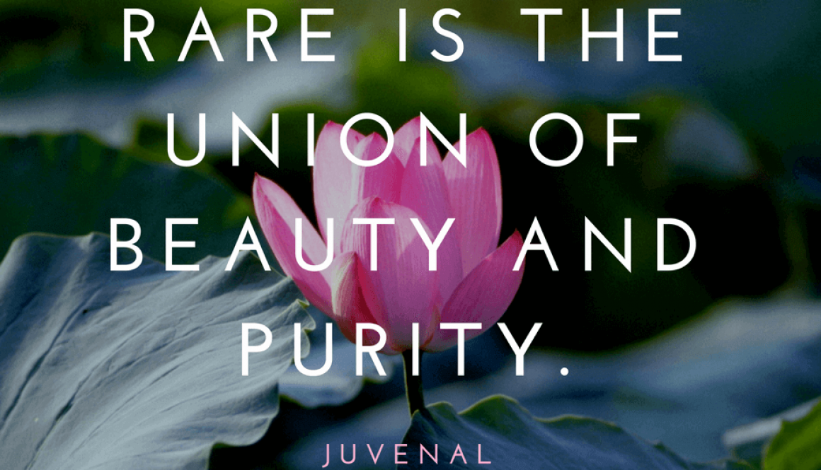 Pure newborn photography, purity quote (Larger Image)