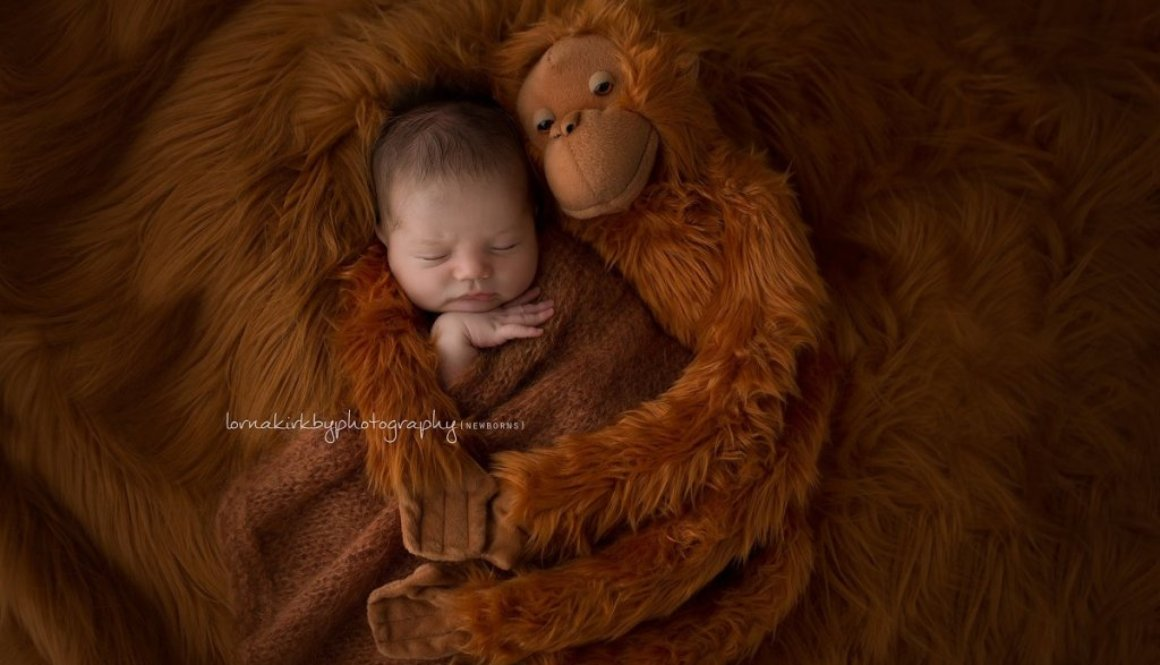 Newborn photo props, The Story Counts